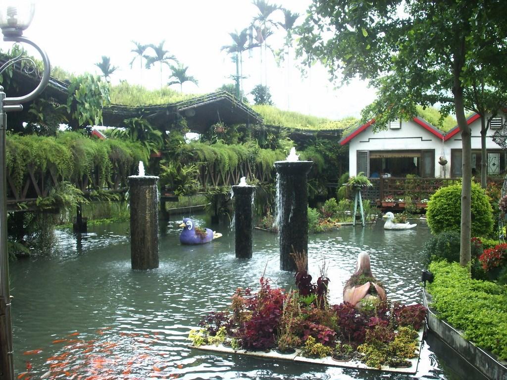 台一生態水上花餐廳